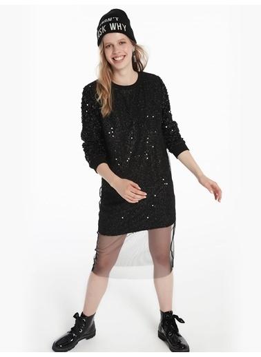 Twist Ribana Yaka Tül Mixli Payet Form Elbise Siyah